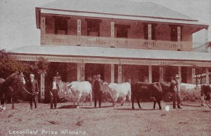 Leconfield House (Wyndhams with cattle)_crop